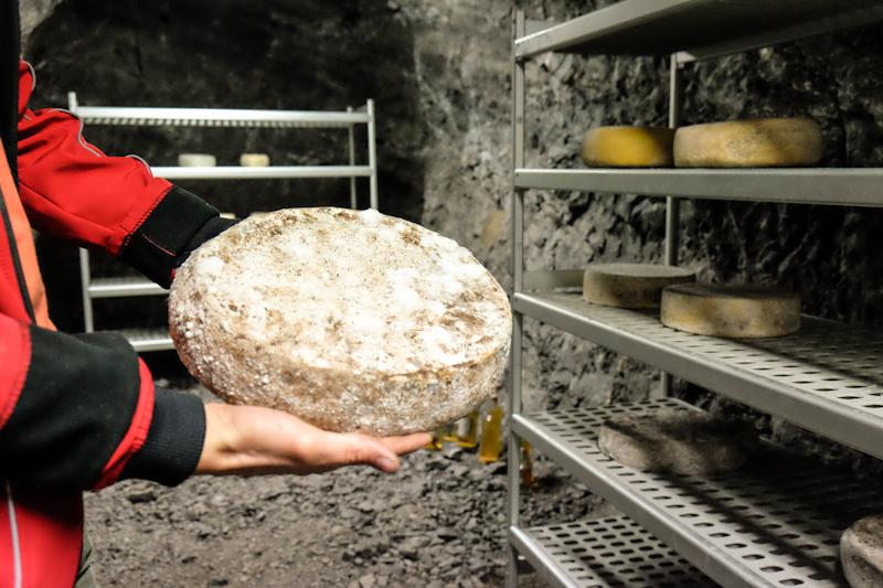 """""""Ol Minadur"""": storia di un formaggio in miniera"""